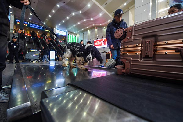 Chinese search dog at airport.jpg