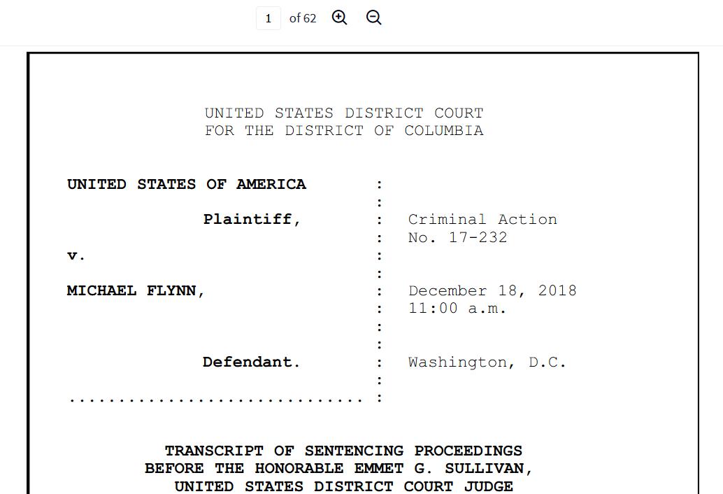 Flynn 62 sentence hearing transcript.png