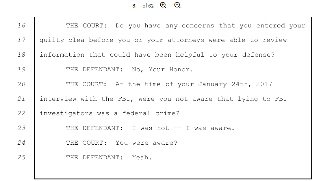 Flynn sentence hearing page eight of 62 yes I knew.png