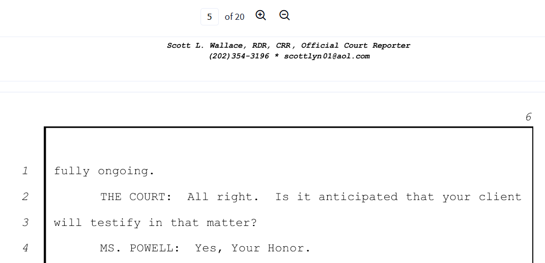Powell June 24th page six Flynn will testify.png