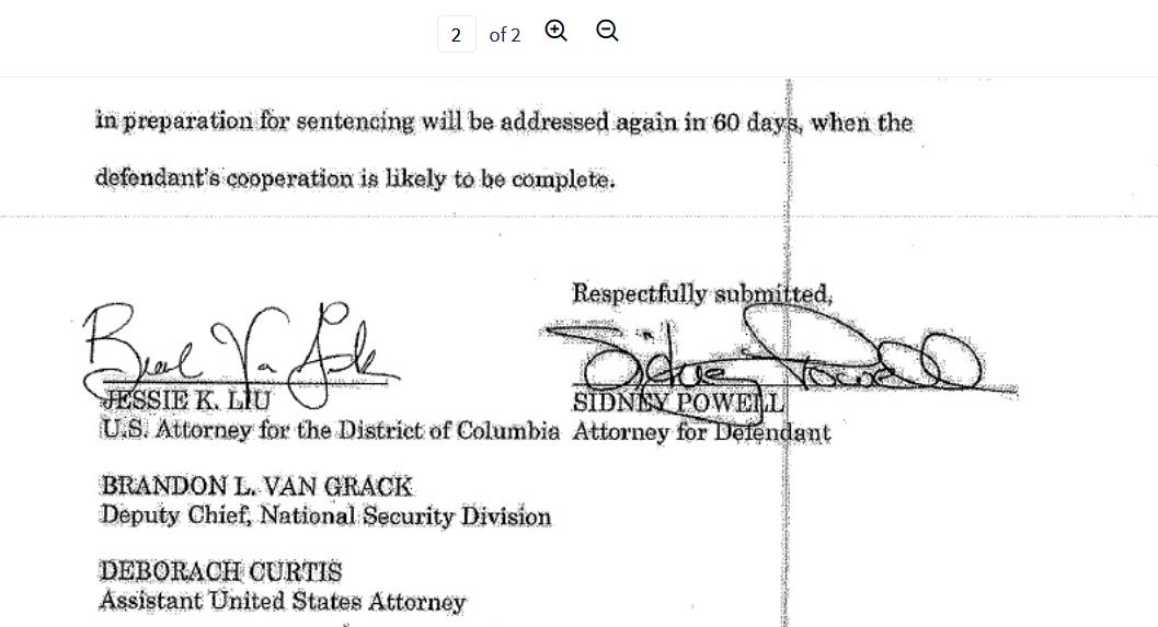 Liu Powell bottom panel Flynn testify.png