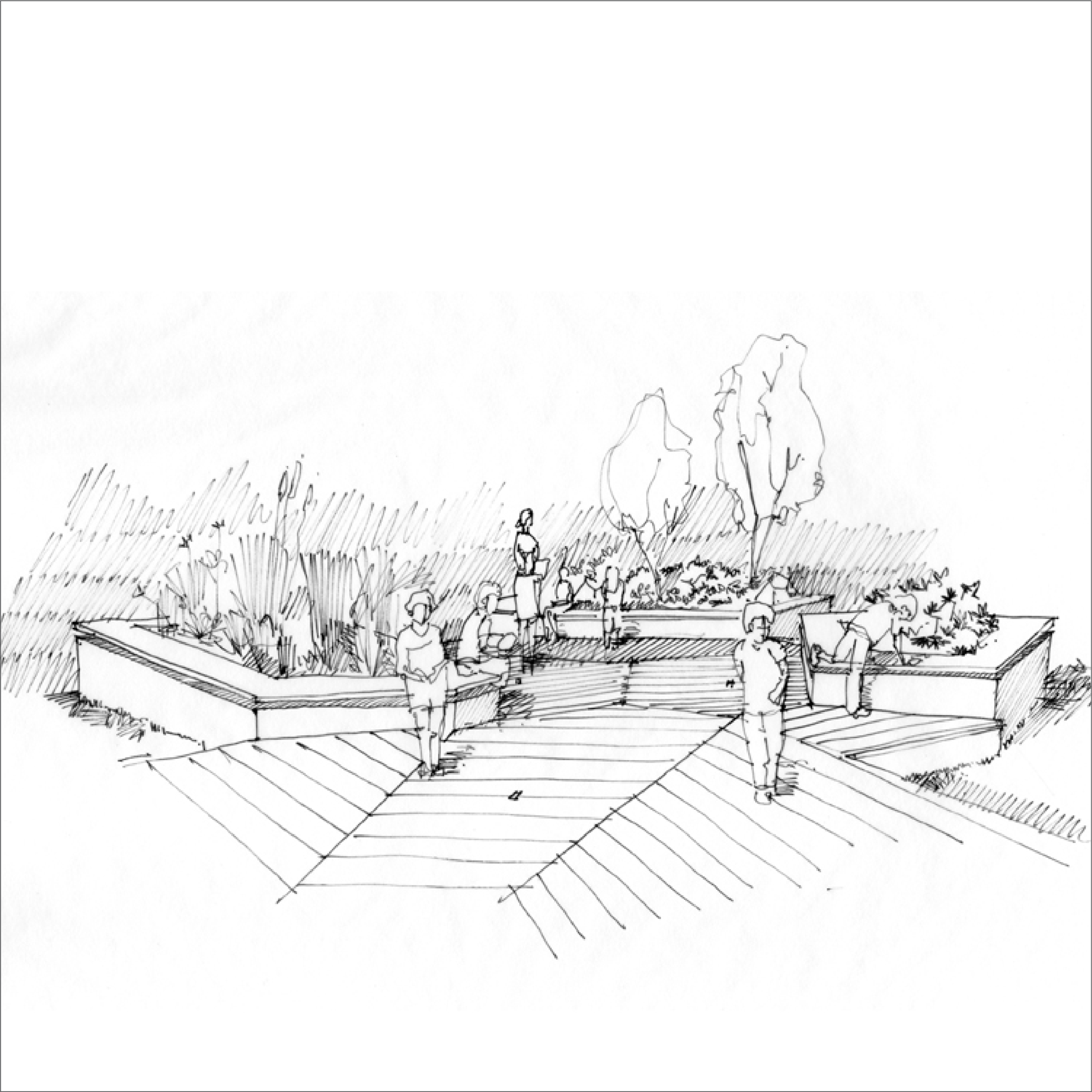 borough school sketch-01.png