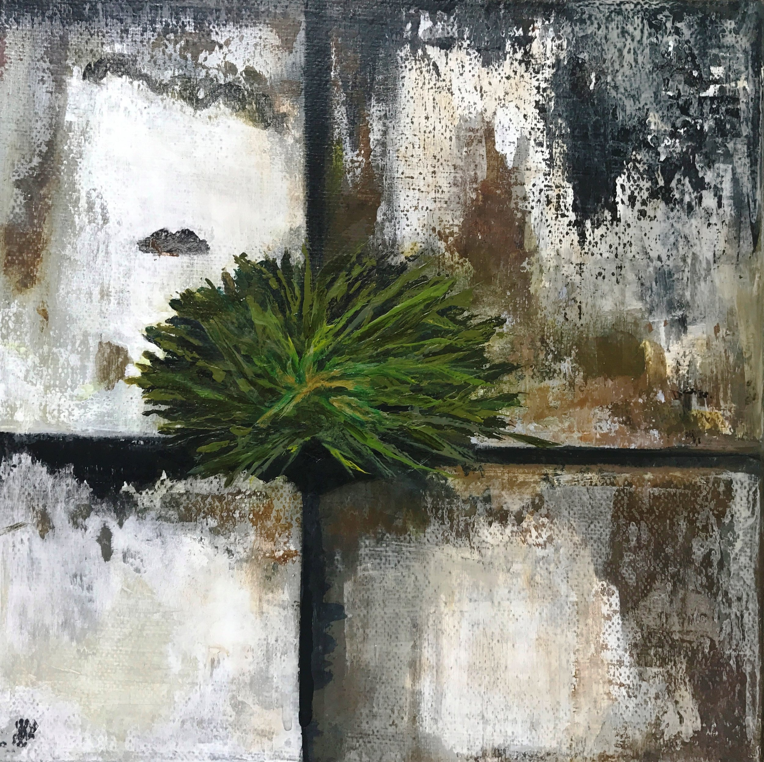 URBAN | Reclamation | 8x8 | $155   Go to URBAN gallery