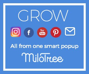 12-17-17-10-10-56_300x250+MiloTree+blue+creative.jpg
