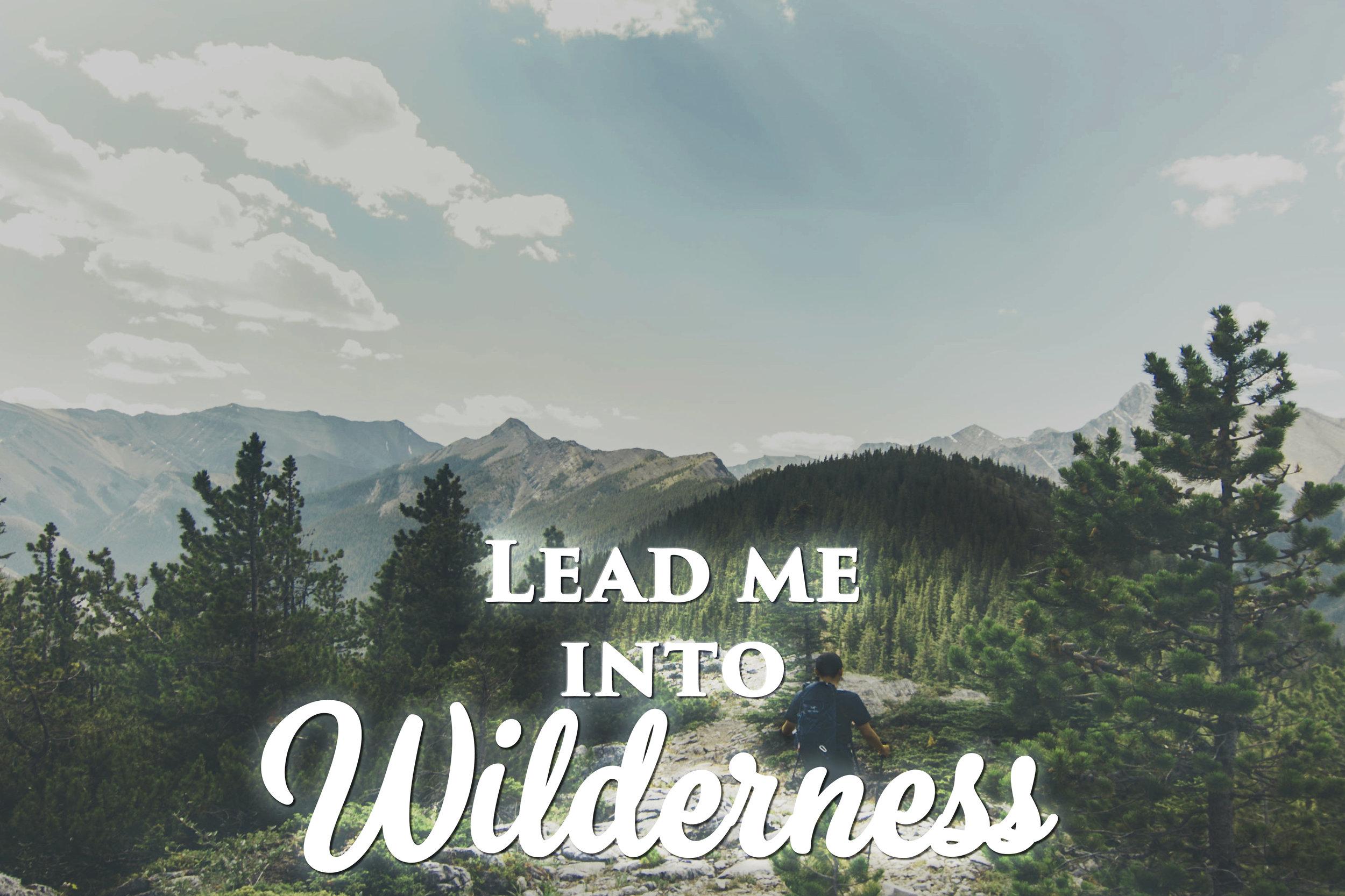 LeadmeWilderness.jpg