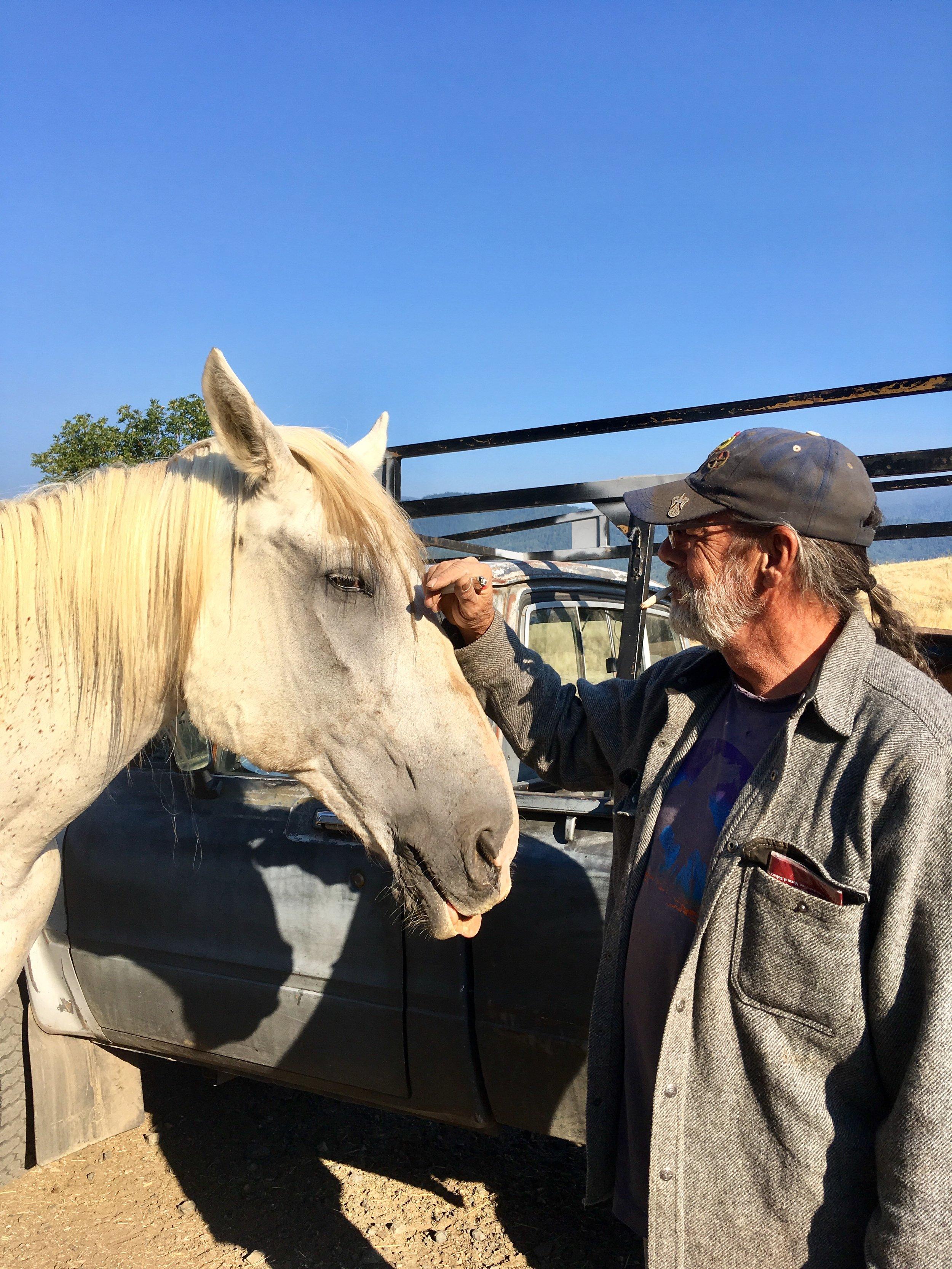 Bravo, the big ol' relic from the former Granada Arabian stables.