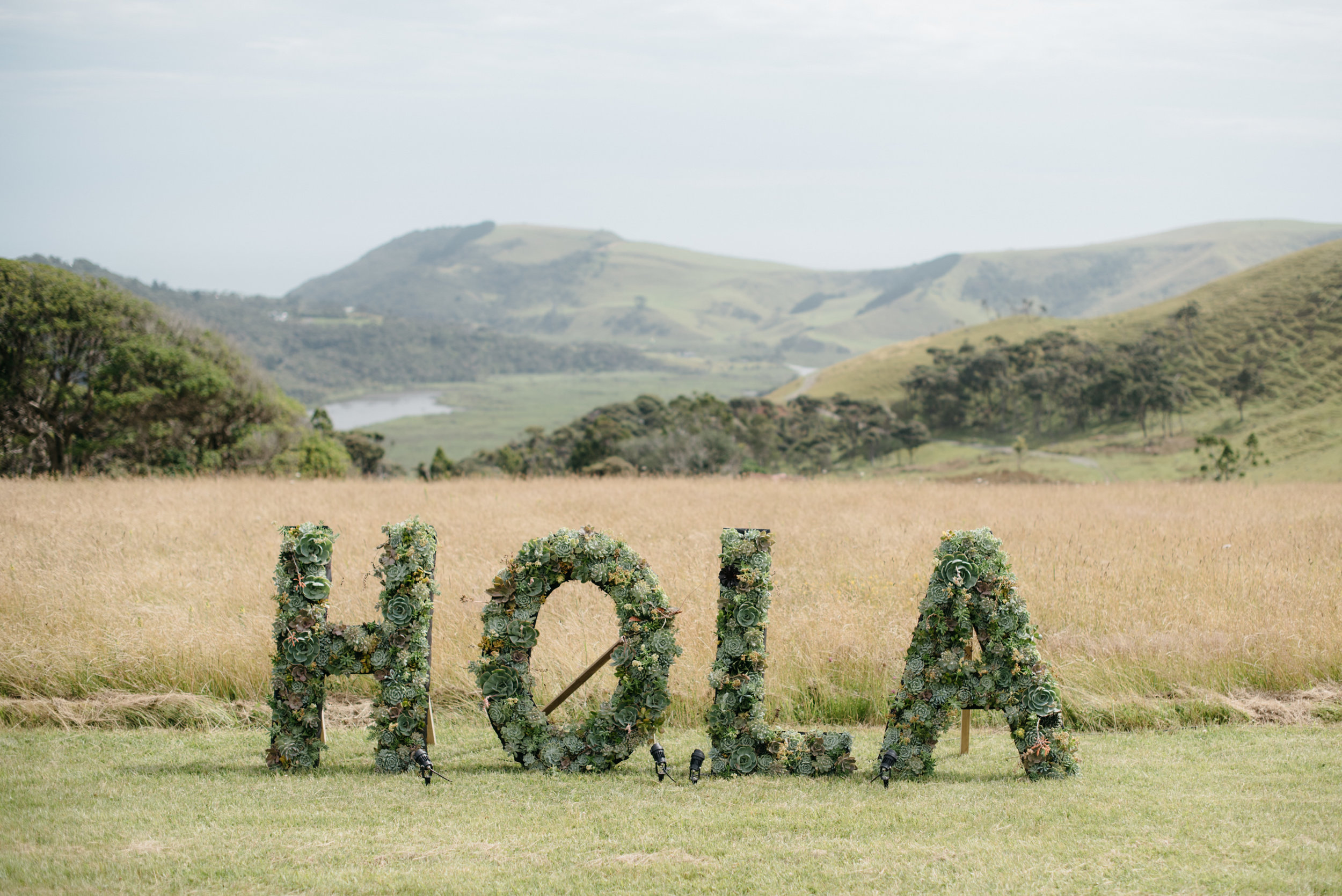 Josie and Ryan EPHEMERAL CREATIVE Jonkers Farm New Zealand Wedding succulent HOLA sign