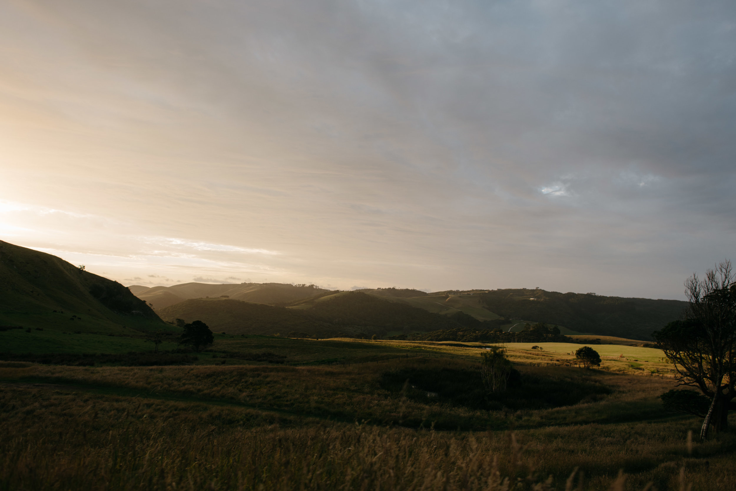 Josie and Ryan EPHEMERAL CREATIVE Jonkers Farm New Zealand Wedding sunset
