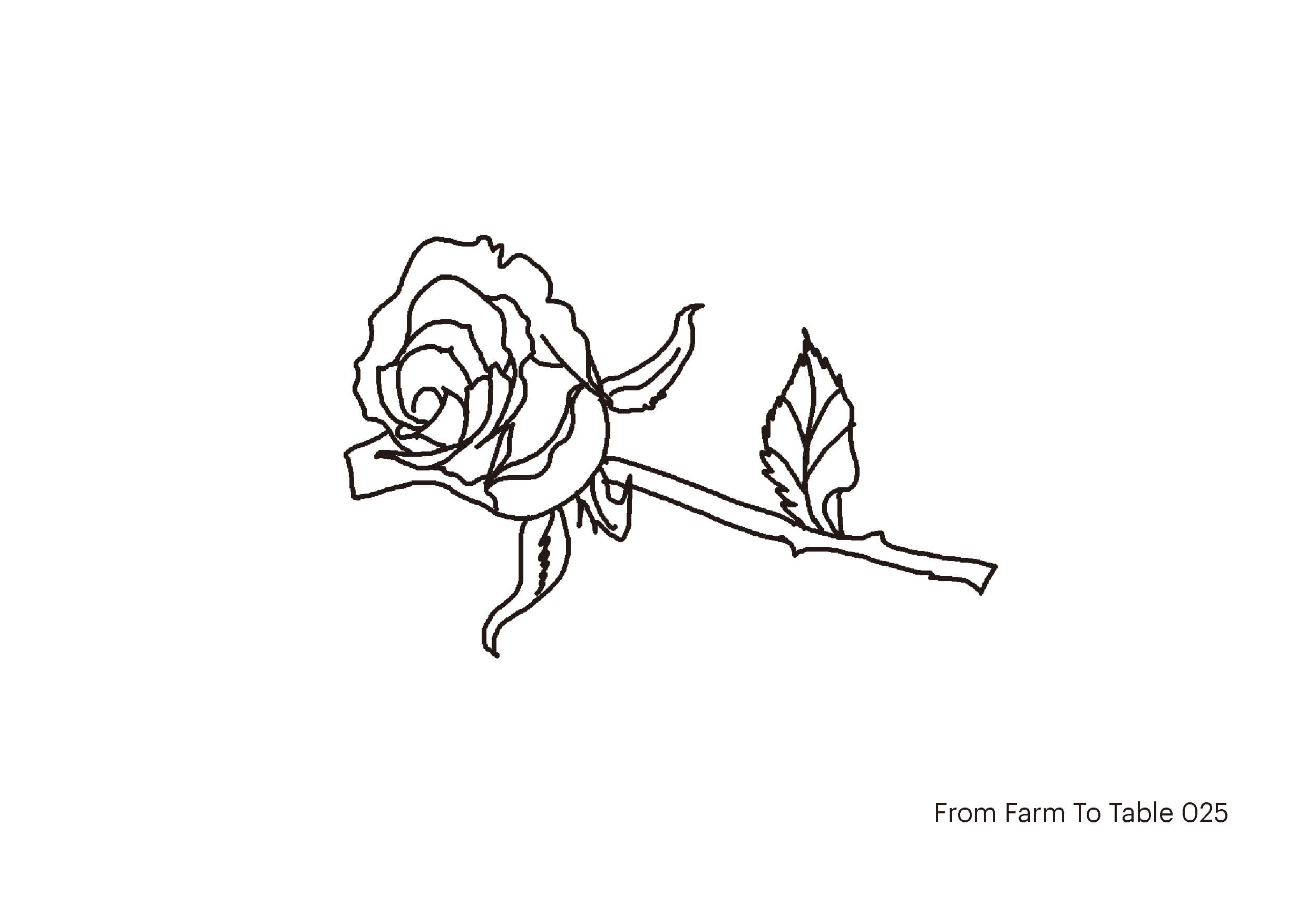 farm to table - Don_s drawing-25web.jpg