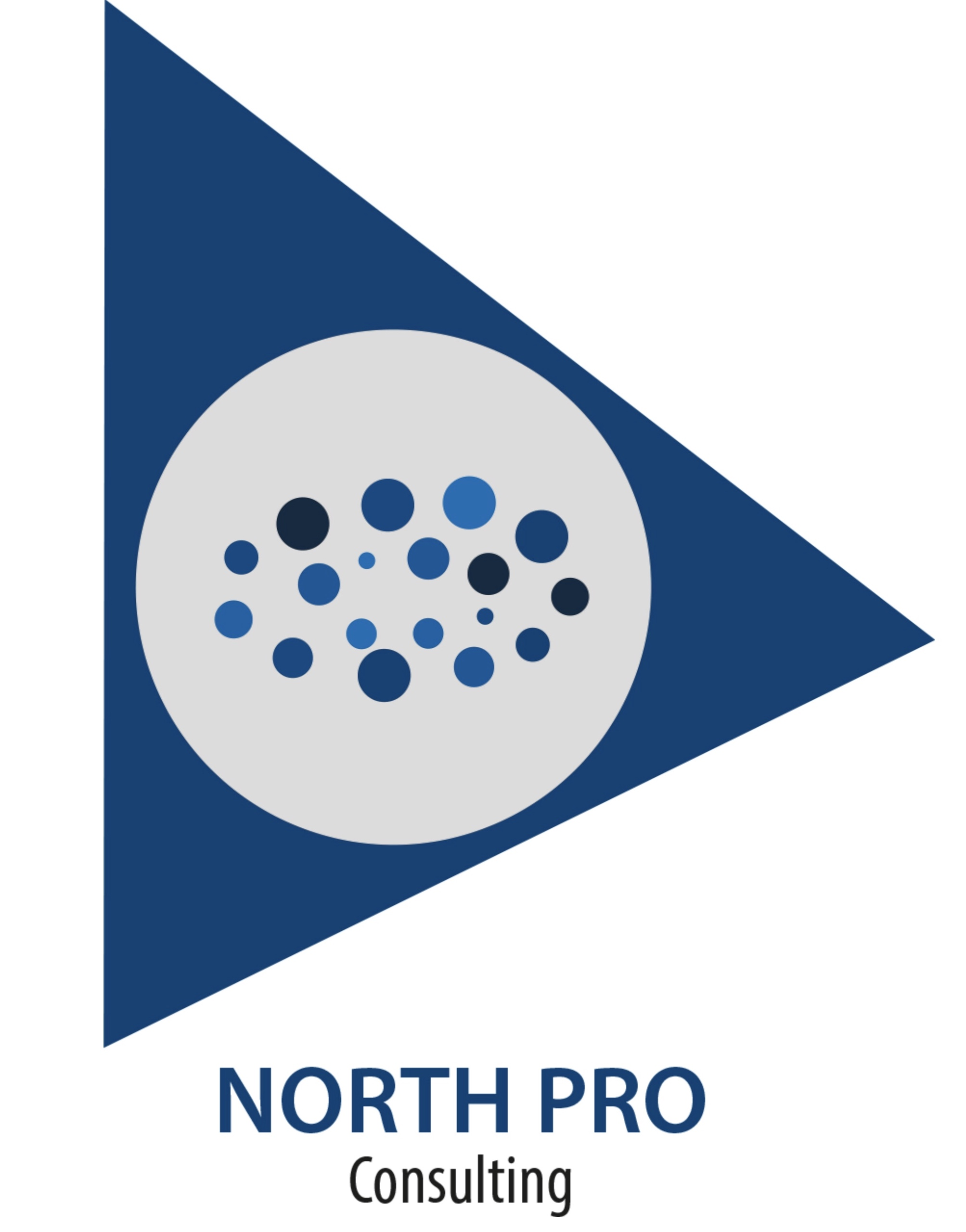 Logo NorthPro Consulting