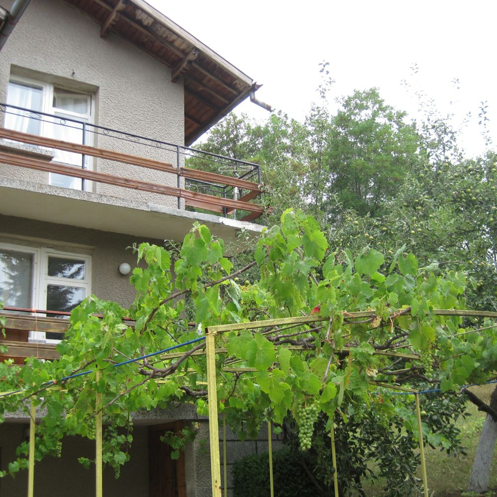 Grape arbors are found on homes across Bulgaria.