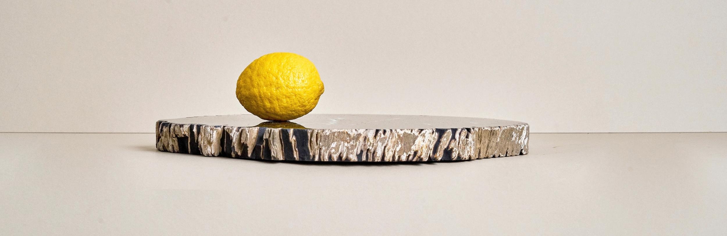 PETRIFIED WOOD SLABS -