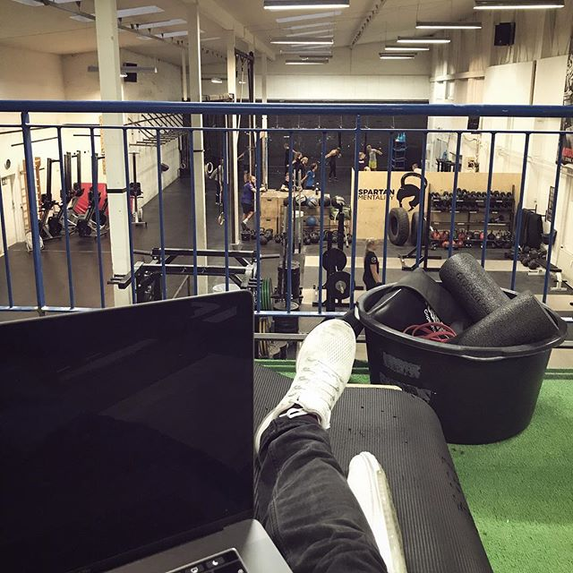 Working hard or hardly working 💪🏼 #mortysofficeoftheday #digitalnomad #aarhus #officeworkout