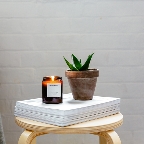 Candle Lifestyle Plant-Quick Preset_500x500.PNG