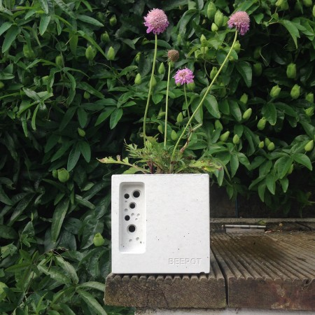 beepot_mini_concrete_planter_with_bee_hotel_by_green_and_blue-450x450.jpg