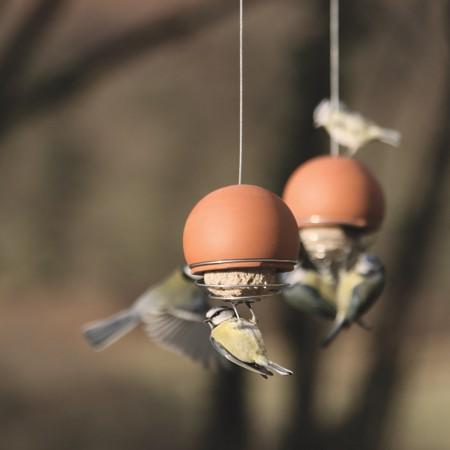 terracotta-belle-bird-feeder-with-birds-feeding-by-green-and-blue.-450x450.jpg