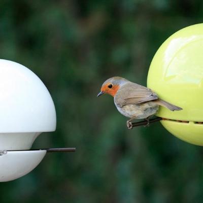 bird-feeders-by-GreenBlue-1300x550.jpg