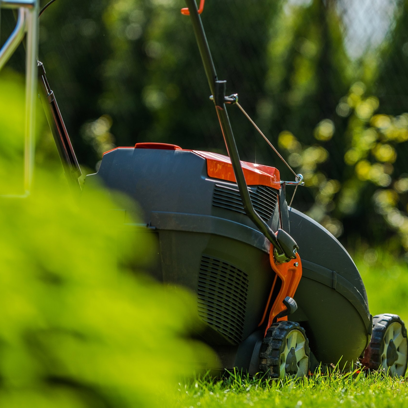 The Perfect Lawn guide -