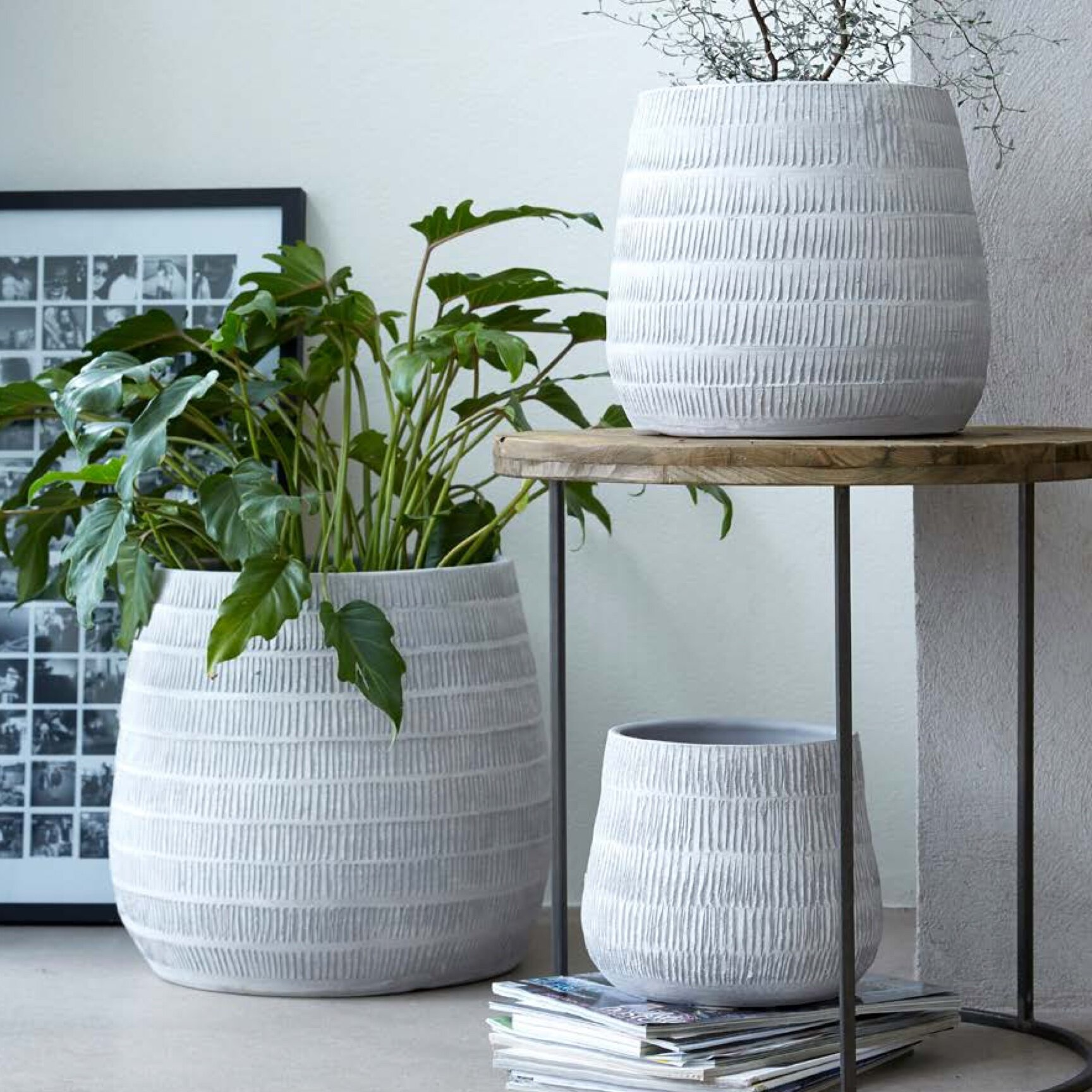 Indoor Pots - Well placed plants can transform your home, bringing character, structure and serenity to any room. However, picking the right pot is almost as important as choosing the right plant.One key factor to consider is drainage. Most houseplants don't like standing in water, so your pot should have a hole at the bottom to allow water to escape. If you choose an indoor pot without drainage holes, it's best to keep the plant in its original plastic container, placing it inside your chosen decorative pot on a layer of gravel or small saucer.With dozens of indoor pots to choose from, in a wide variety of styles and colours, we're sure to have the right one for you.