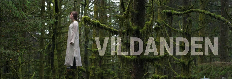 2016 Vildanen FB.jpg