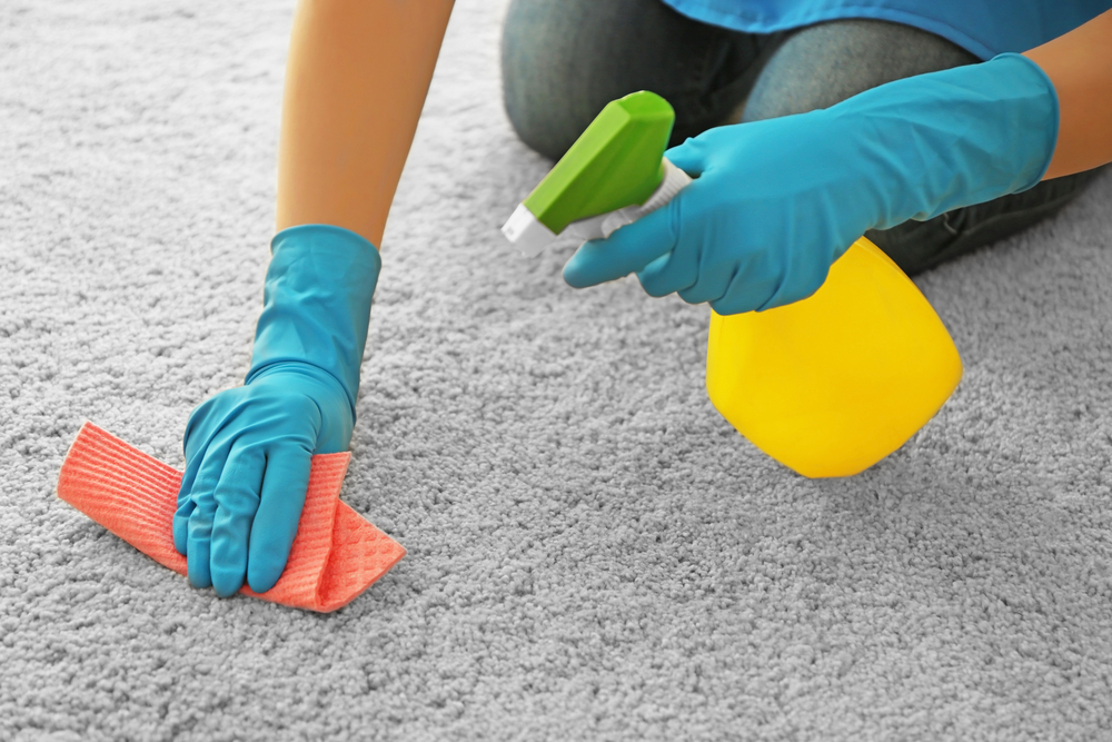 Person cleaning carpet with gloves and spray.jpg