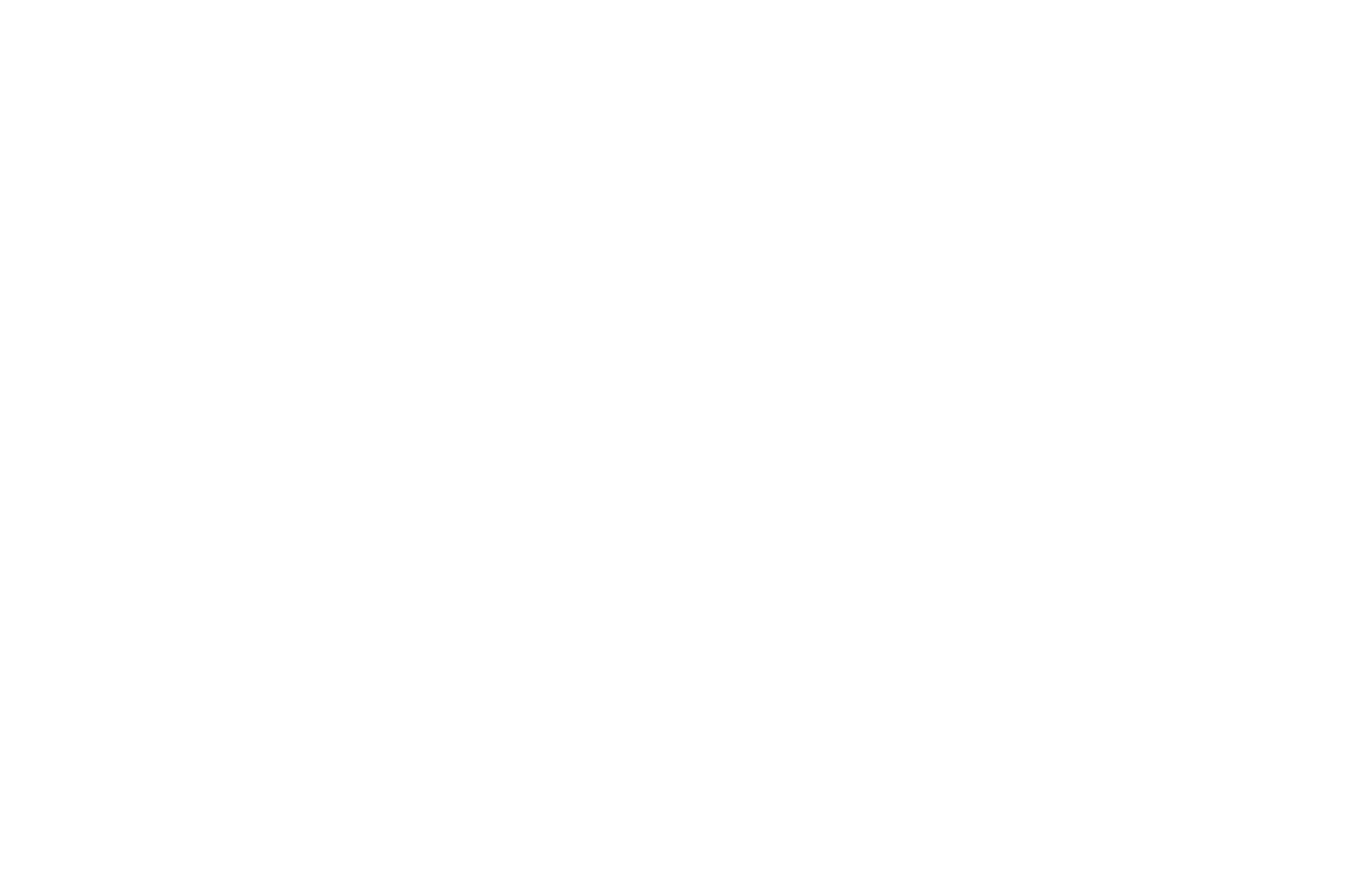 OFFICIAL SELECTION - Boston Galactic STARS - 2018.png