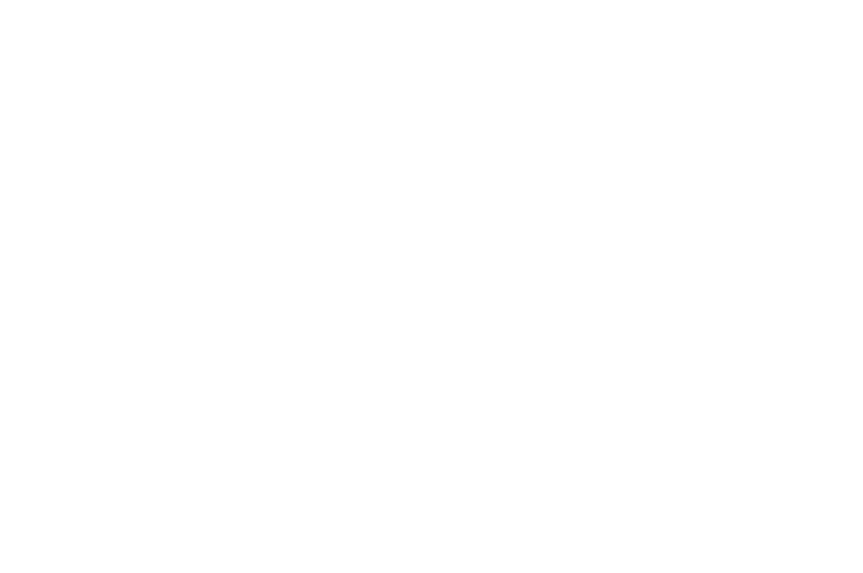OFFICIAL SELECTION - Womens Only Entertainment Film Festival - 2017.png