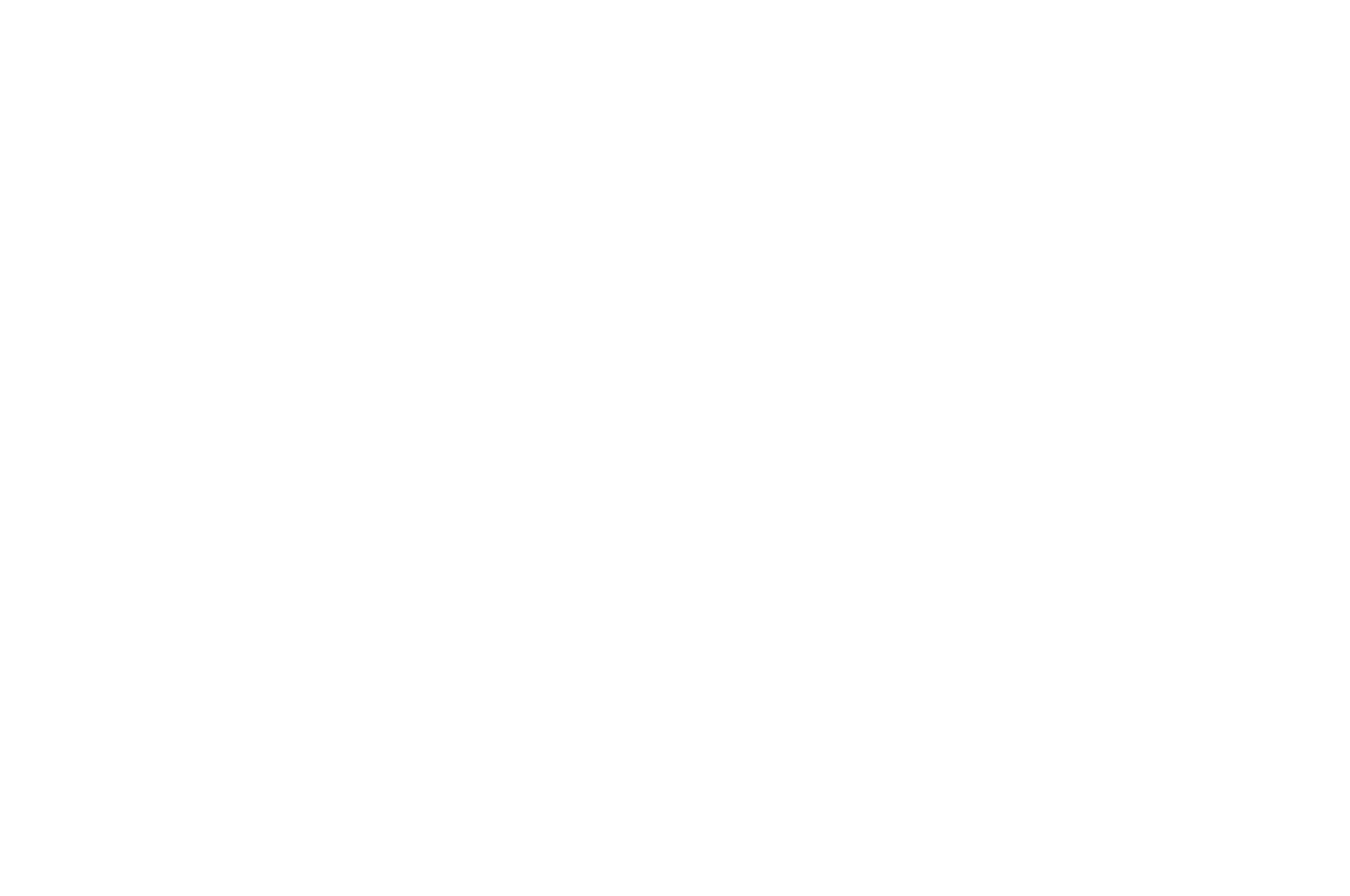 OFFICIAL SELECTION - MIDWEST WEIRDFEST - 2018-2.png
