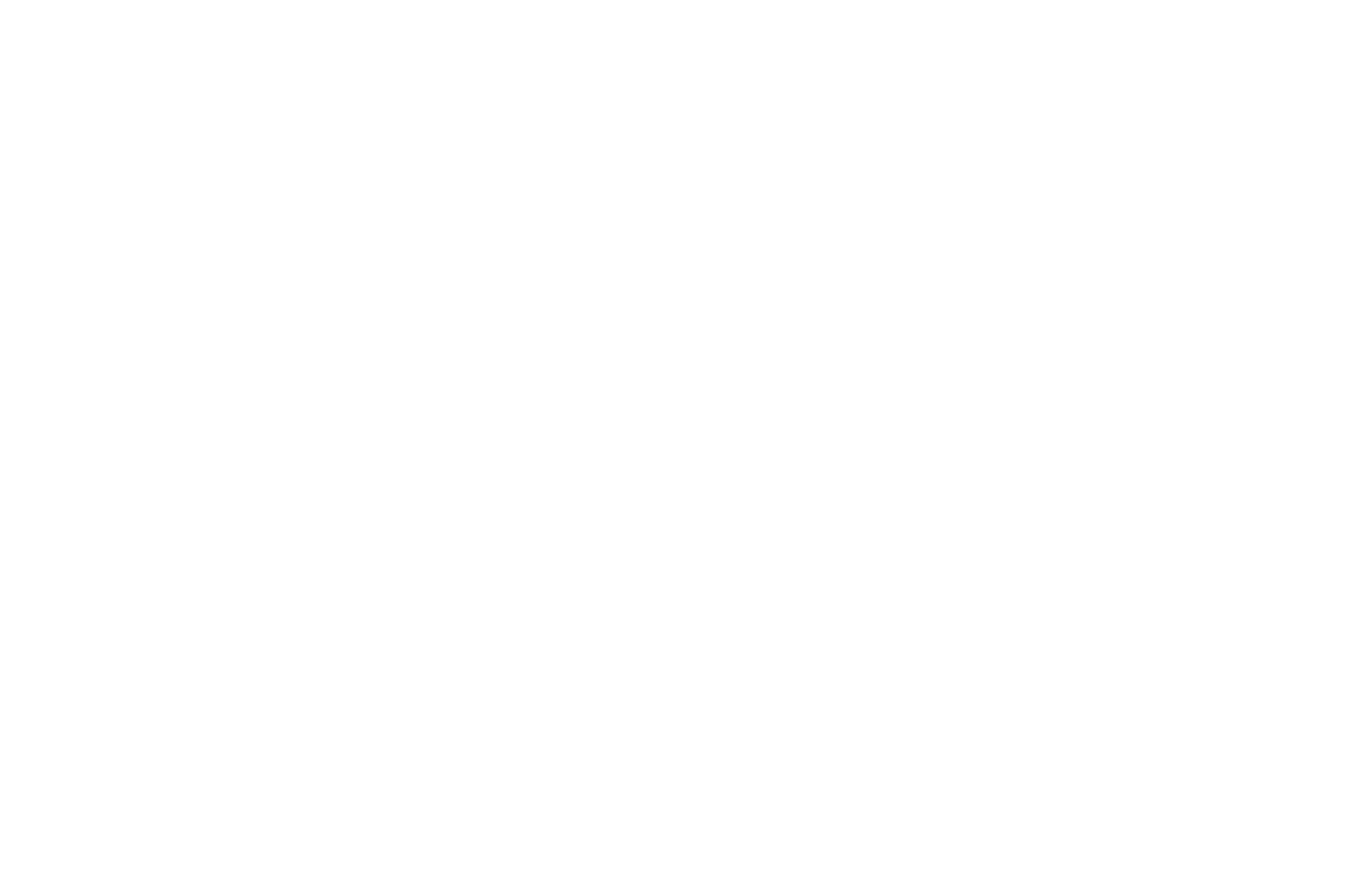 OFFICIAL SELECTION - Weird Local Film Festival - 2018.png