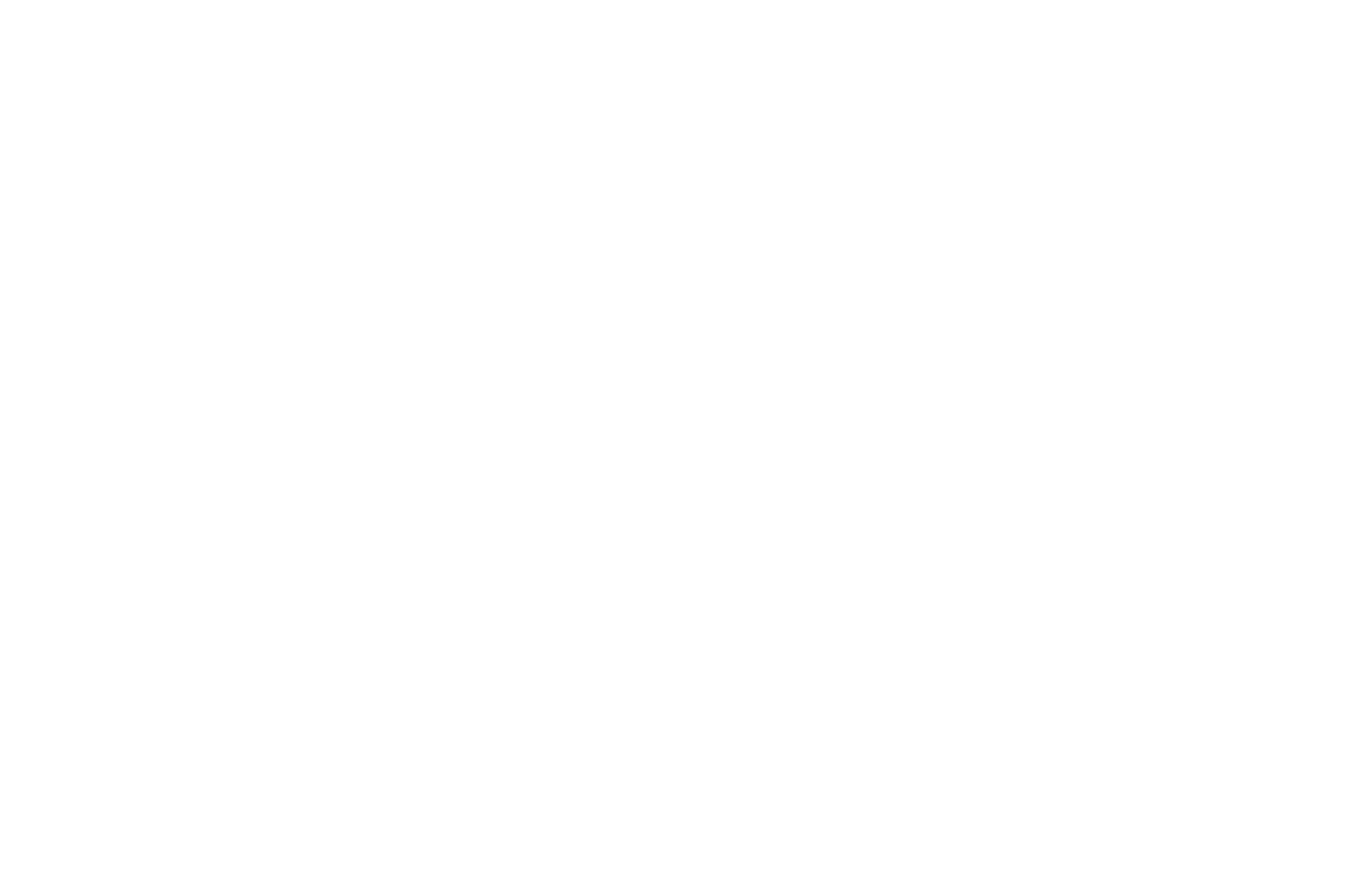 OFFICIAL SELECTION - THE EIFA - The European Independent Film Award 2018.png