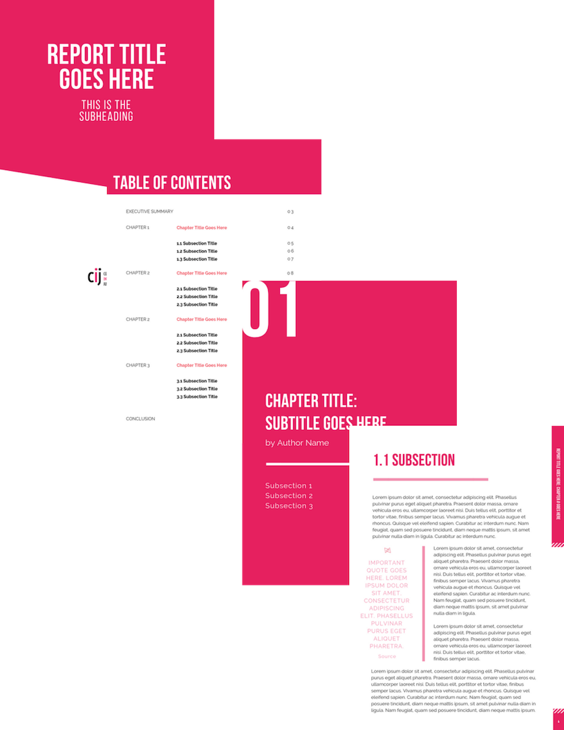For the Center for Intersectional Justice: - A report template design project to ensure on-brand consistency across all future CIJ reports