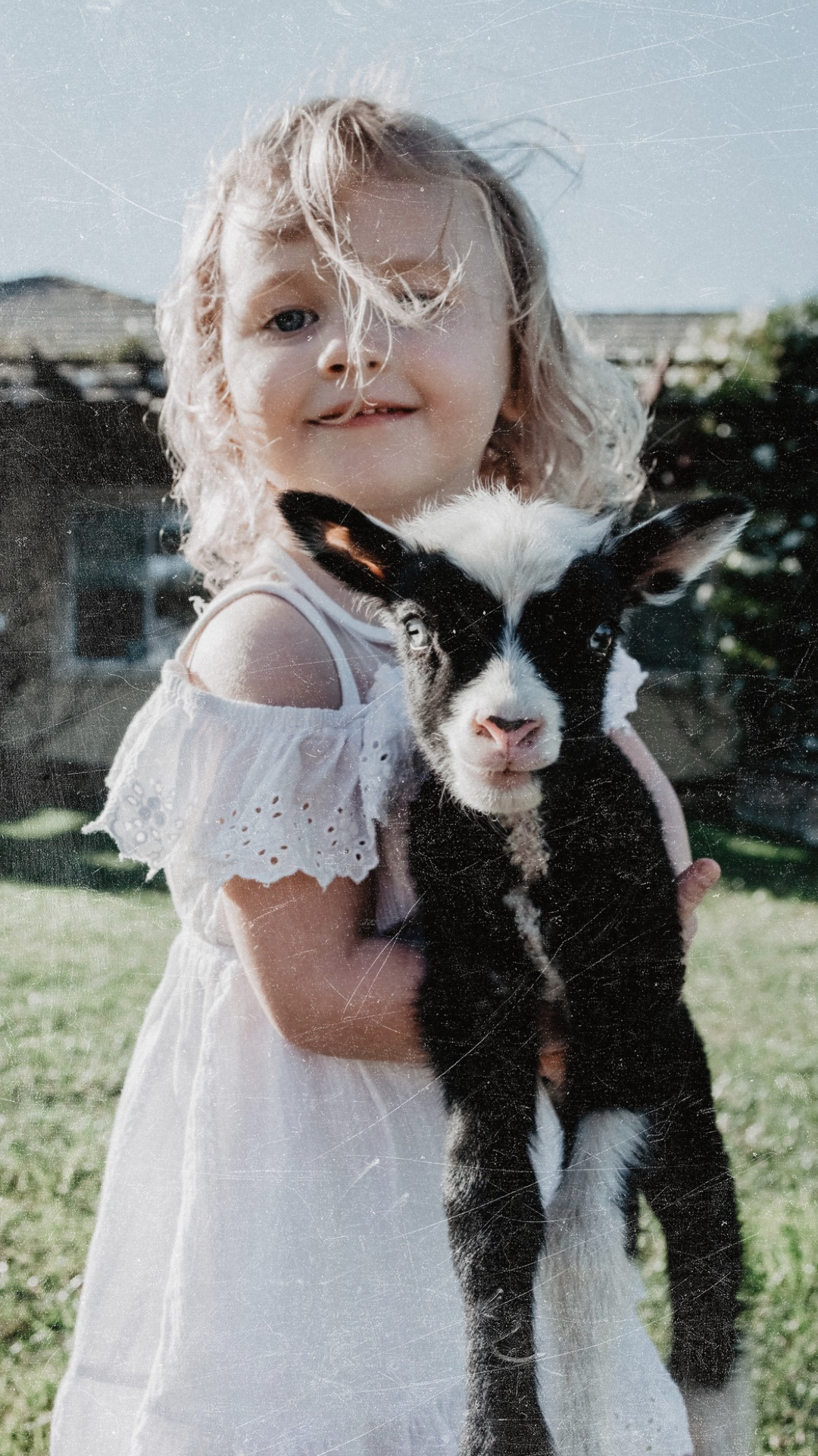 Child Portrait with baby lamb in San Diego