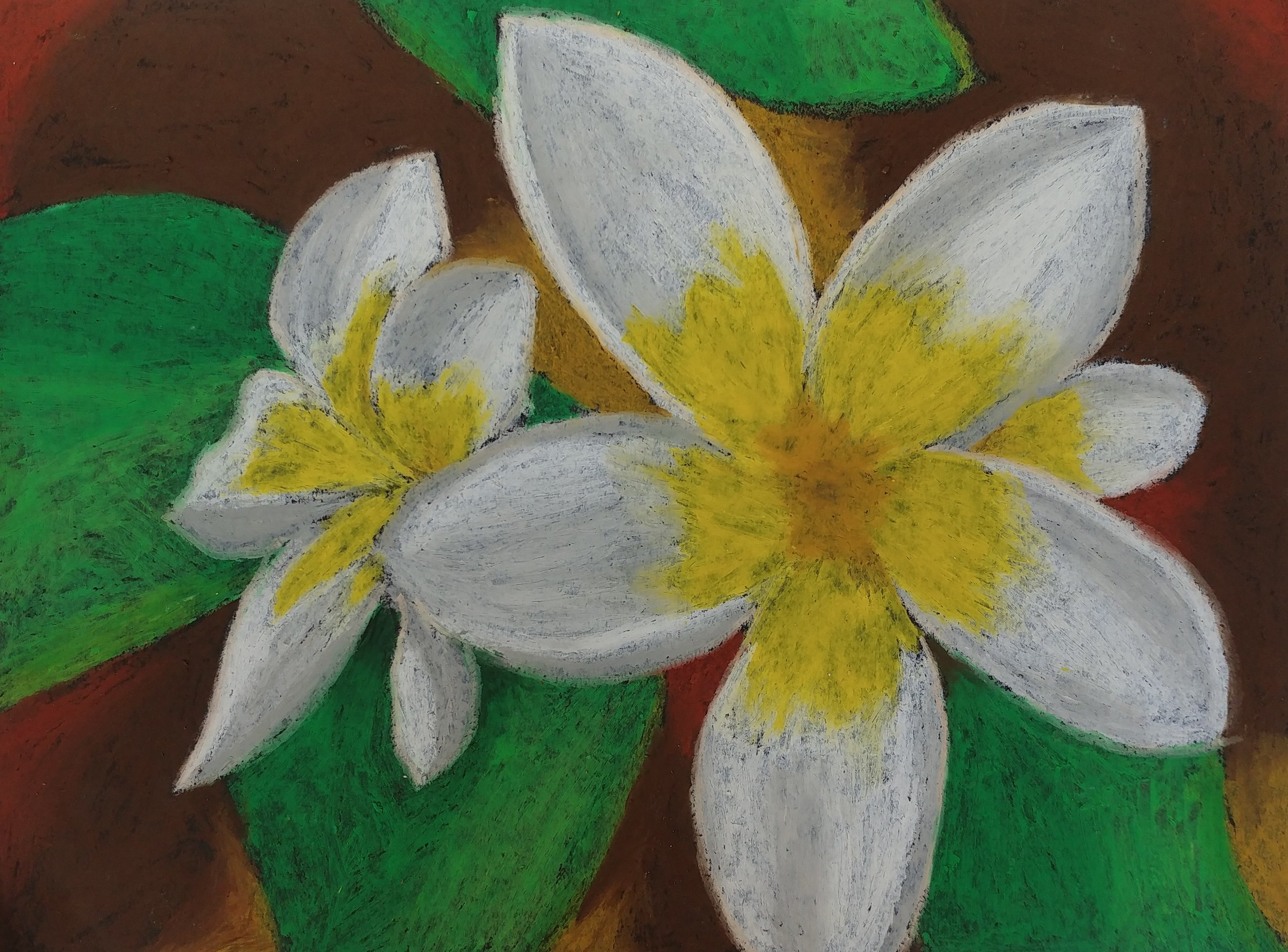 Margot  Grade 7  Oil Pastel on Paper
