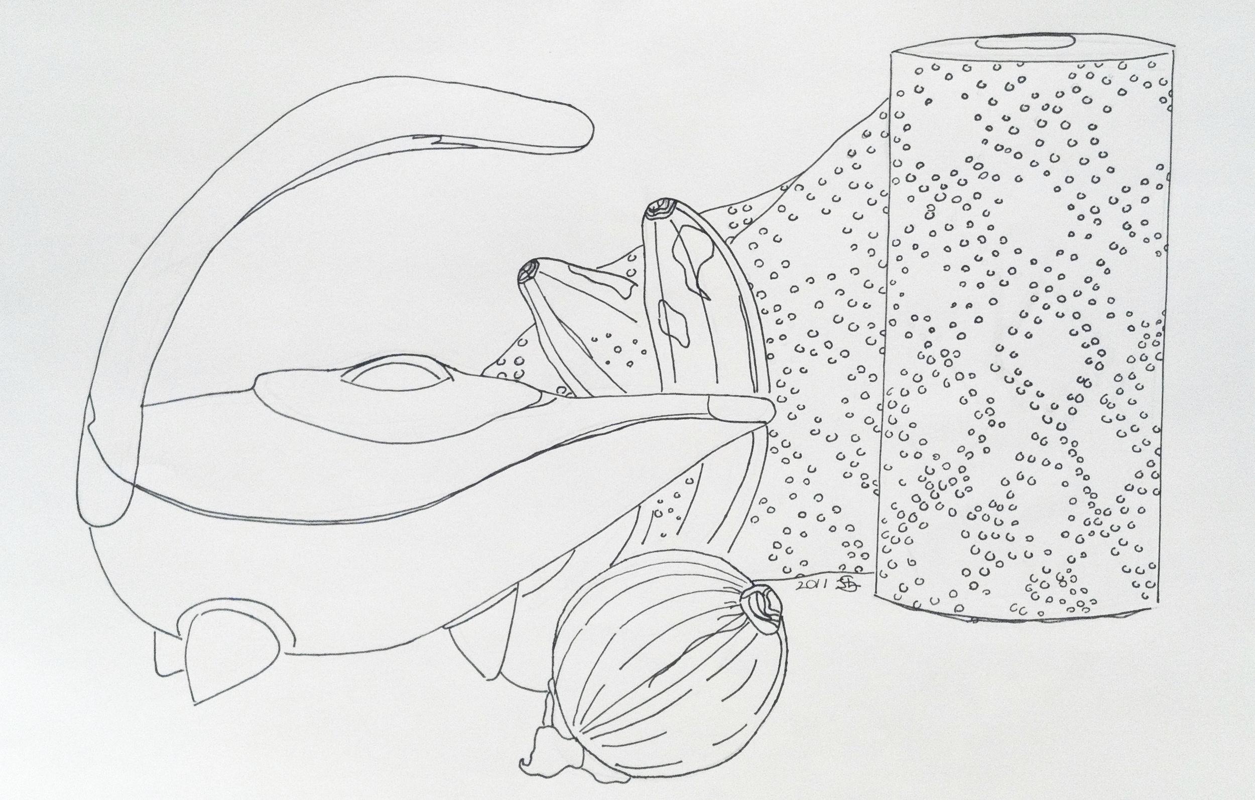 Jean Li  Grade 6  Pen on Paper