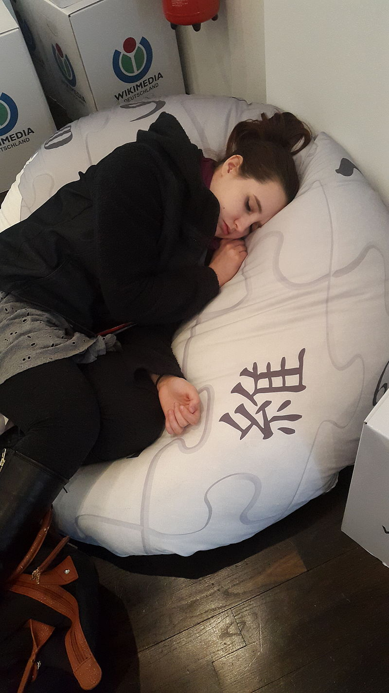 Wikipedian_sleeping_on_the_Wikipedia_beanbag.jpg