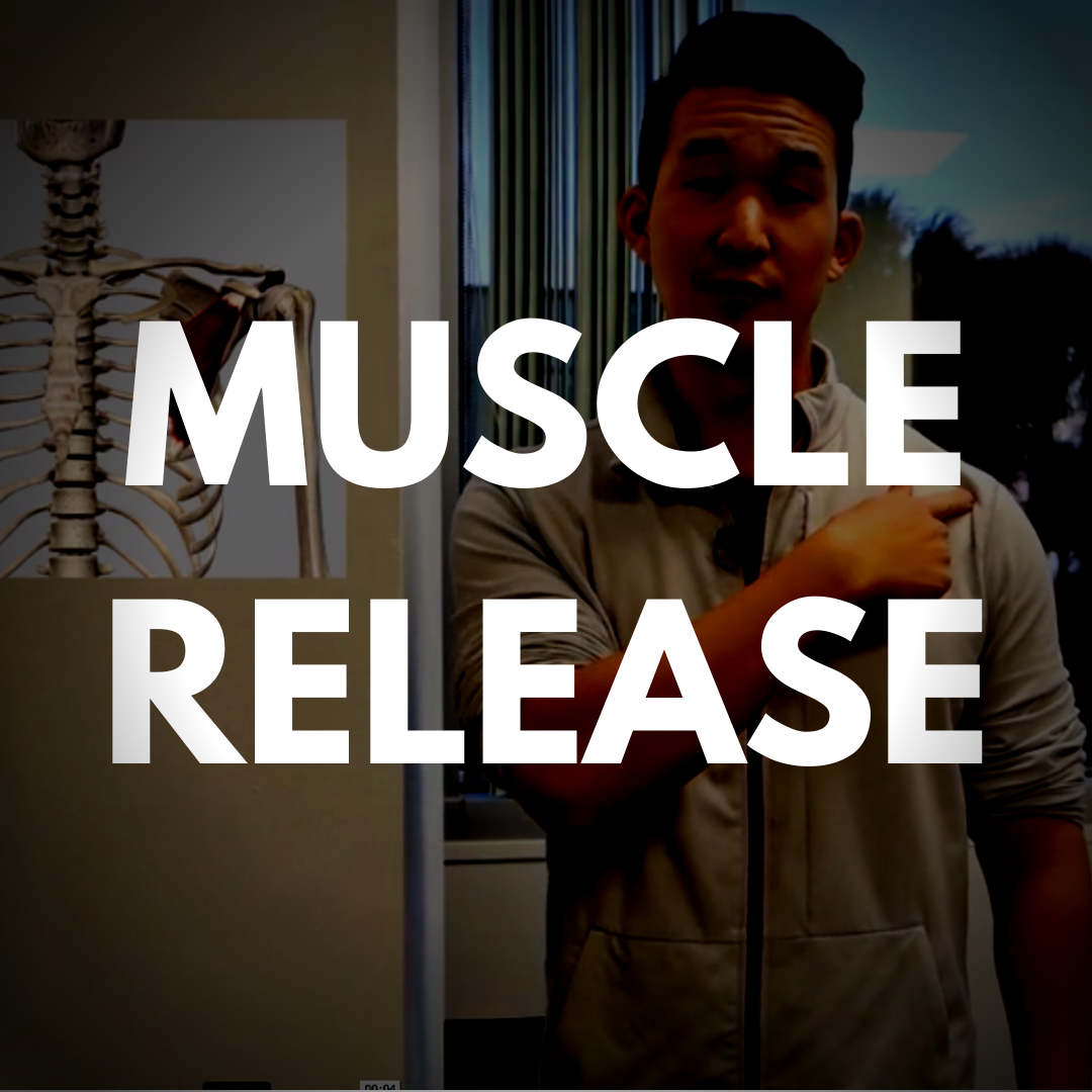 MUSCLE RELEASE (11).png