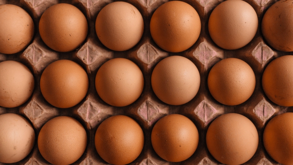 How Much Protein Should I Eat? - ↩