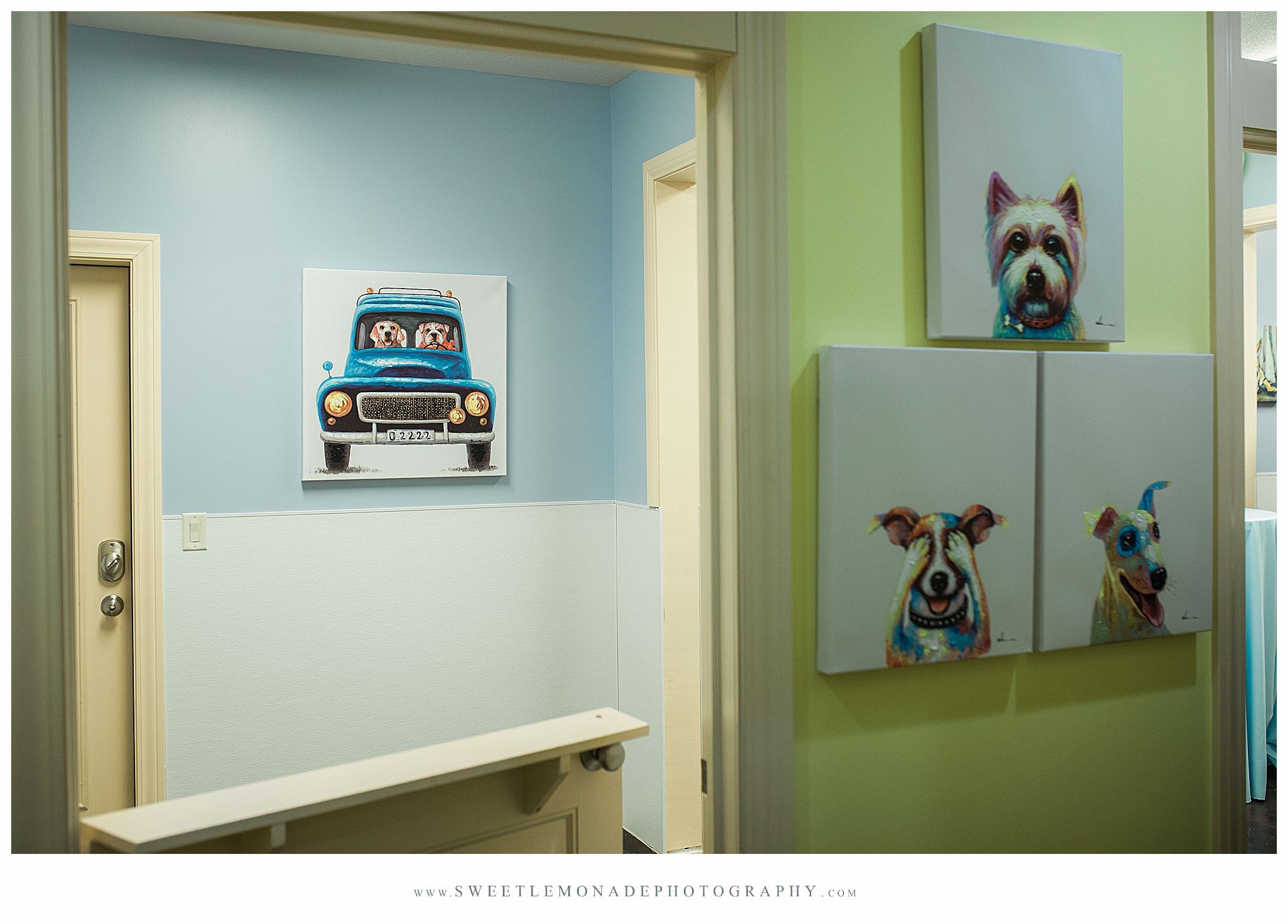 illinois-senior-photographer-ruff-dayz-mahomet-dog-boarding-daycare_2347.jpg