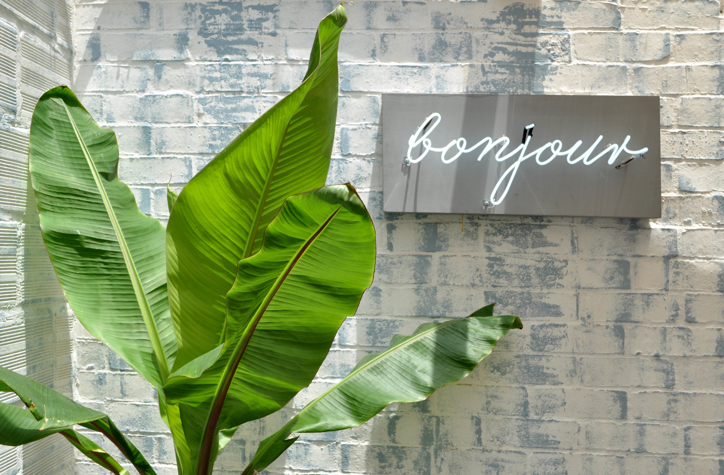 A brick wall brushed with white and blue paint, vintage-feel signage and lush palms add a youthful touch.