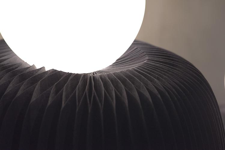 Ara - by Rodolfo Agrella