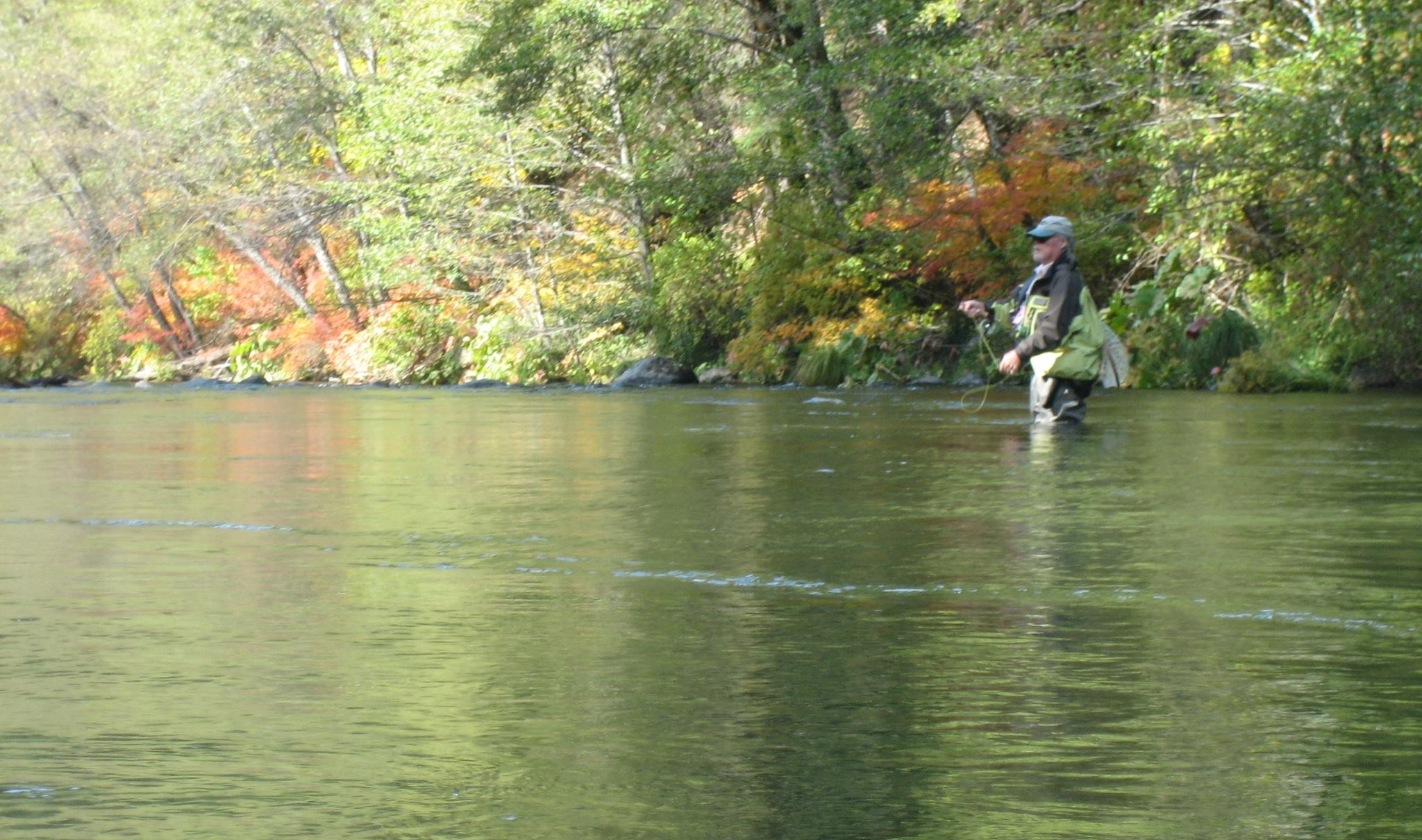 Shasta Trinity Fly Fishers Redding Sportsman's Expo Hunting and Fishing Show