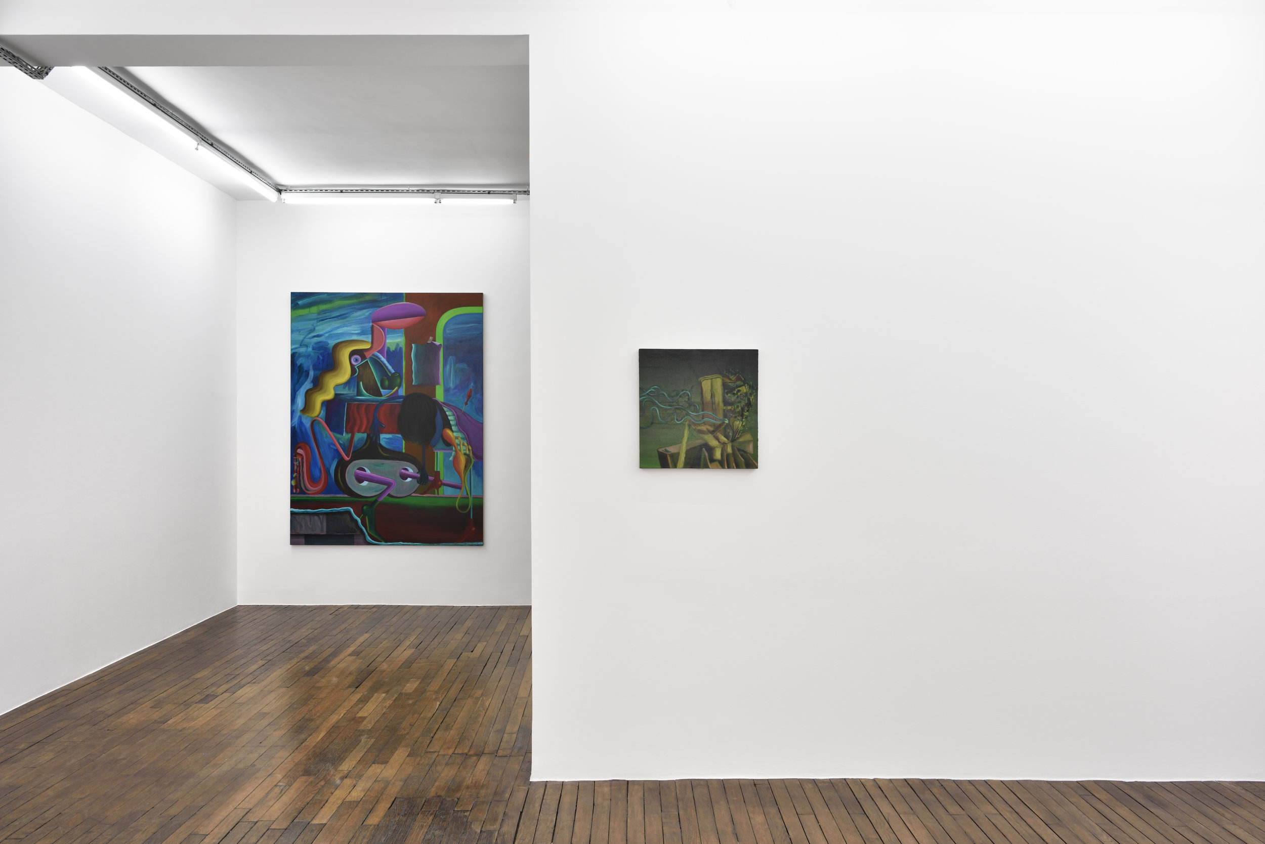 Installation View  I Would Prefer Not To.  2019  Galerie Thomas Bernard. Paris