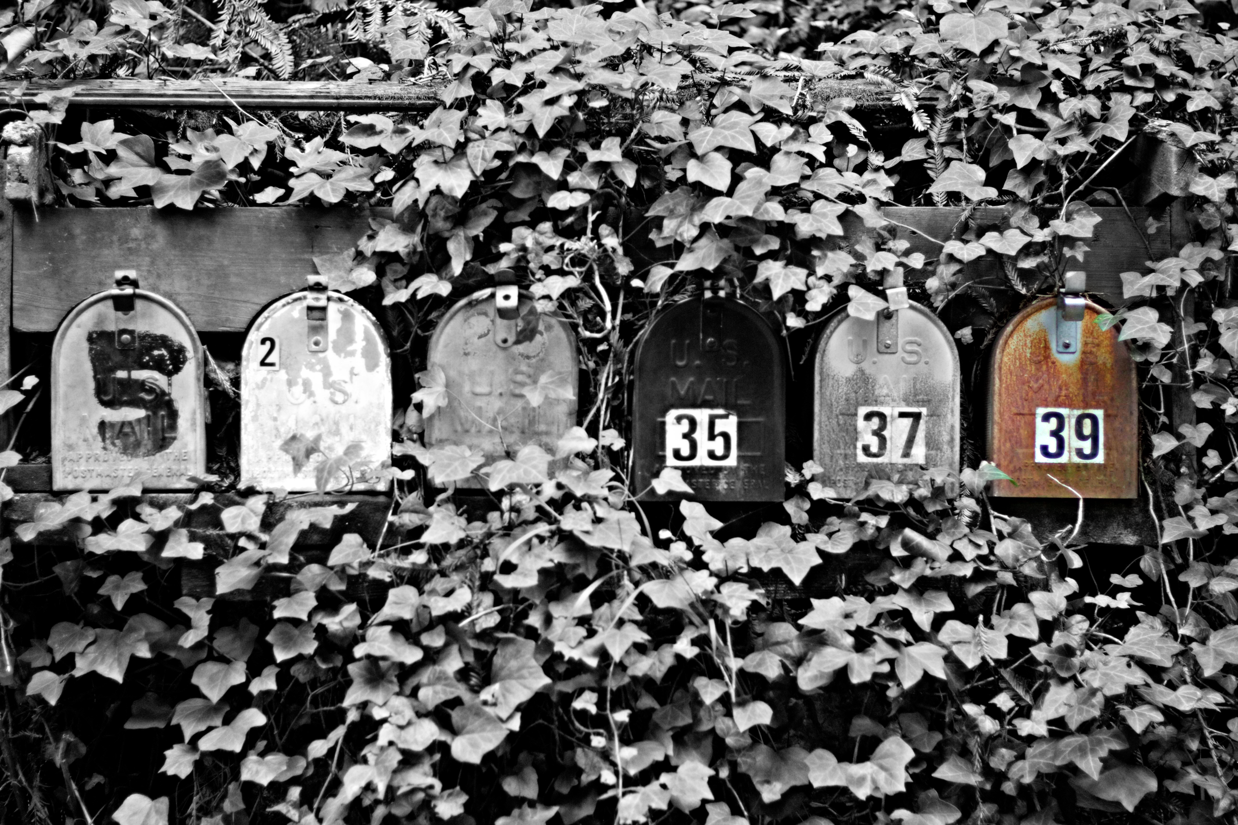 Amanda Mailboxes.png