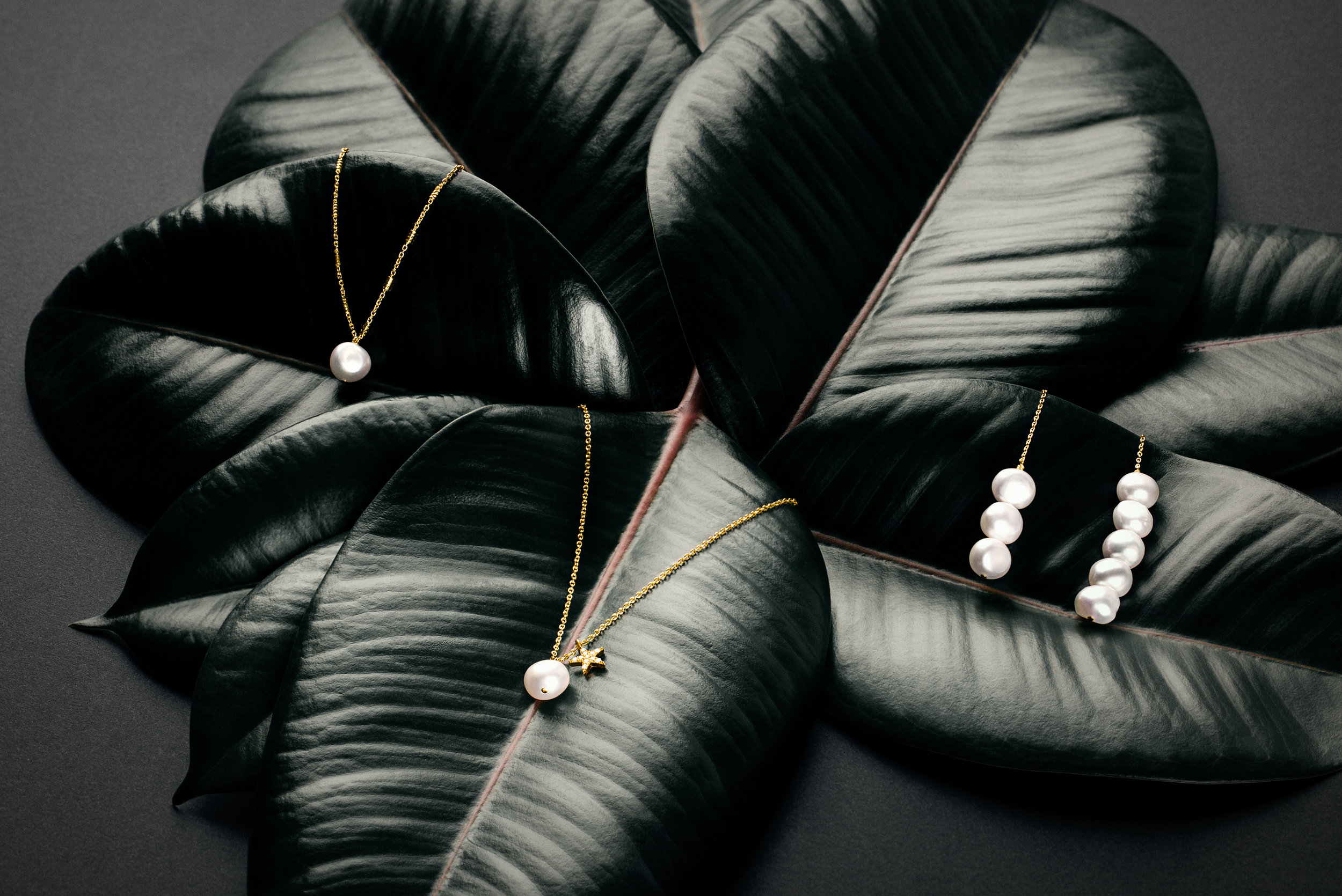 THE CONTEMPORARY CLASSICS - The traditional beauty of a pearl