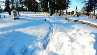 footprints b.jpg