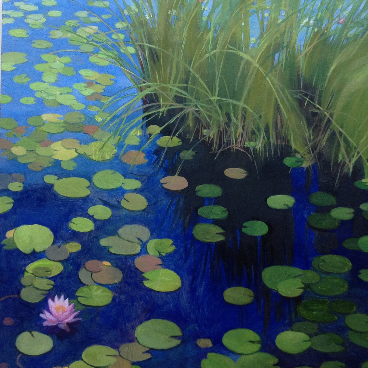 """Lily Pond #3  (sold)  Oil on Wood  8"""" x 8"""""""
