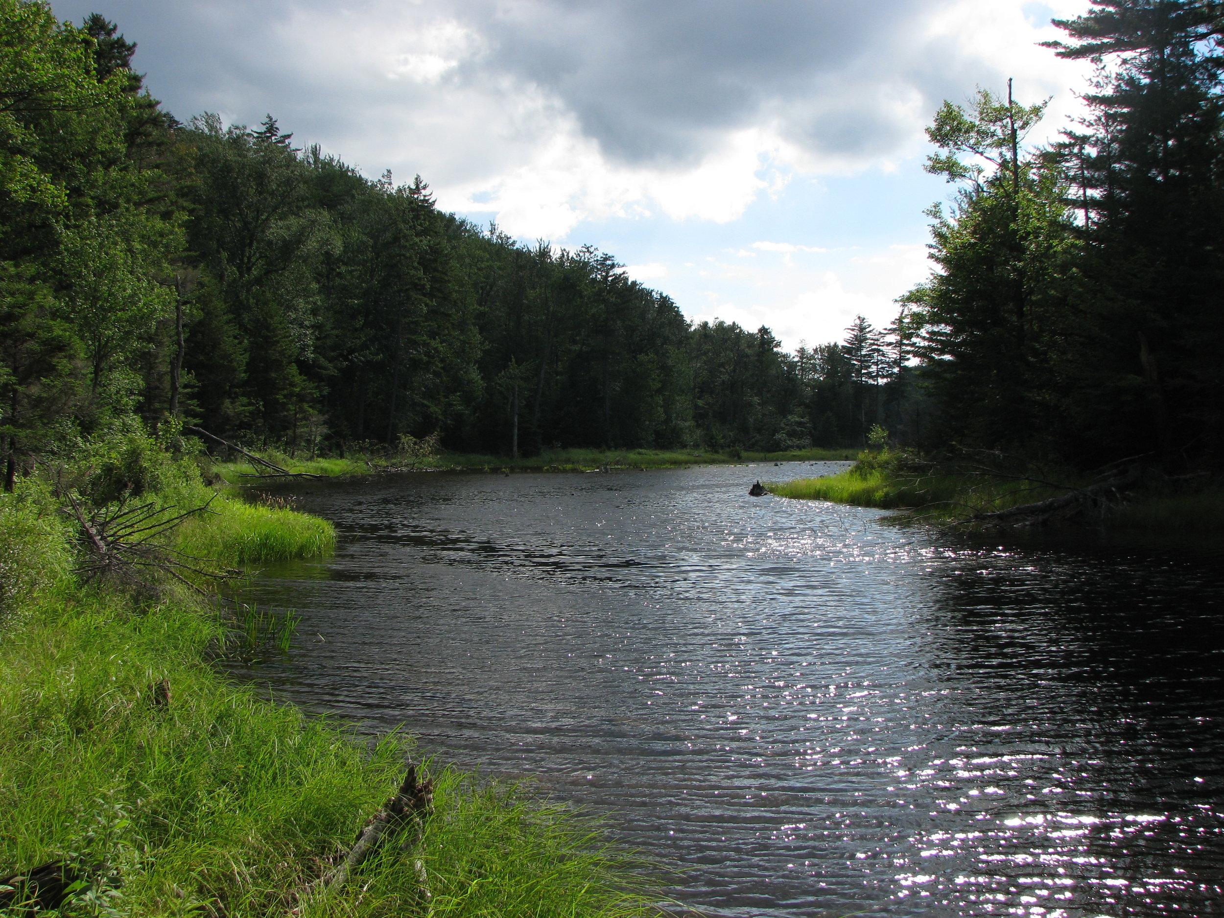 Bog_River_Flow,_St_Lawrence_County,_NY.JPG