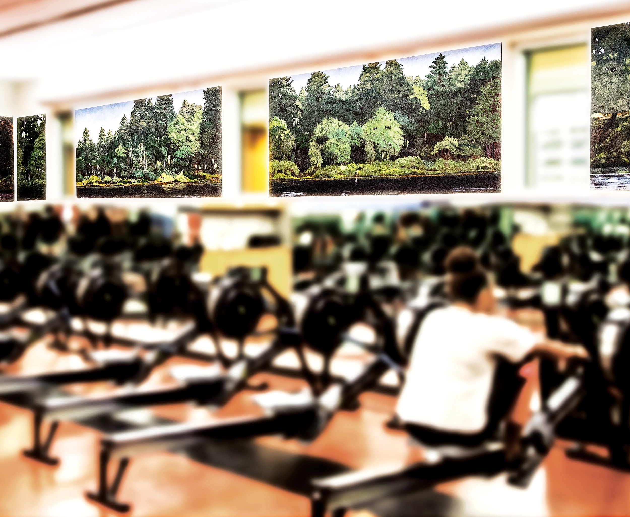 Turkey Pond Mural   Colin Callahan   (Oil on Canvas)   In 2008, Arts Department Head Colin Callahan made it possible for SPS rowers to feel like they're on Turkey Pond – even when they are not. Callahan's panoramic mural of Turkey Pond, dedicated to longtime SPS crew coach Chip Morgan, adorns three sides of the ergometer room in the Athletic and Fitness Center, making students feel like they are rowing down the slot of Turkey Pond. Members of the SPS Facilities team created the boards and giant mounts, while Pete Cole '91, president of Gamblin Artist's Colors, helped defray costs on the high-quality oil paints Callahan used. Using his own digital photos to depict nearly every angle of the Turkey Pond course, Callahan applied Gesso to prepare the surface for the paint on each of the 12 panels, measuring roughly 3' x 2' to 3' x 10'. On close inspection, the murals reveal many details usually reserved for the rowers'-eye-view, including the 1,500-, 1,000-, and 500-meter marks.