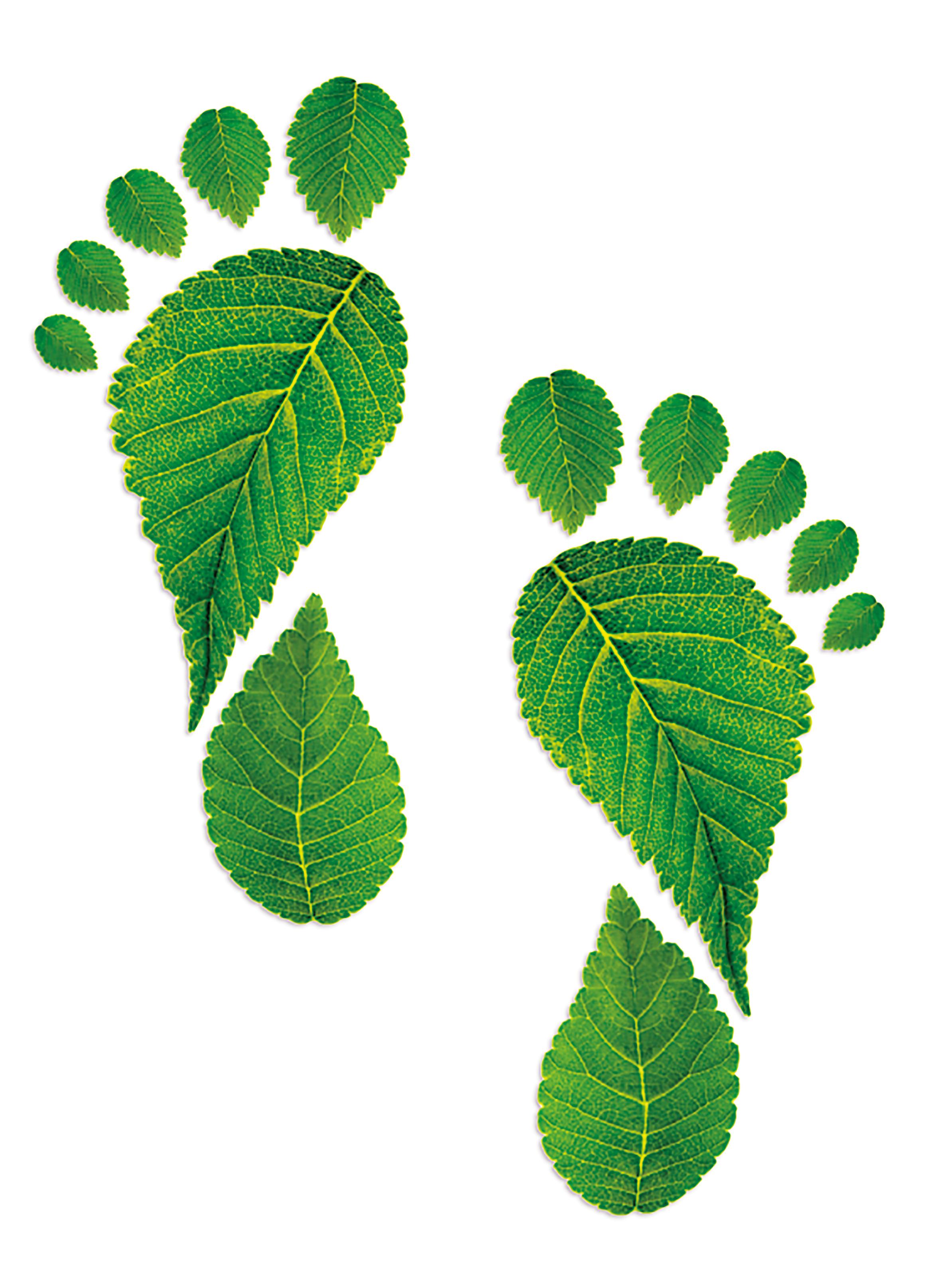 footprint000059504978_Small.jpg