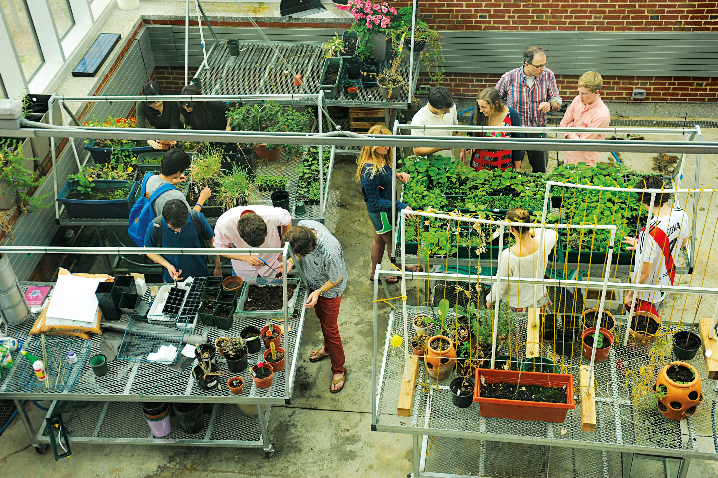 Students work in the greenhouse at the Lindsay Center for Mathematics and Science.